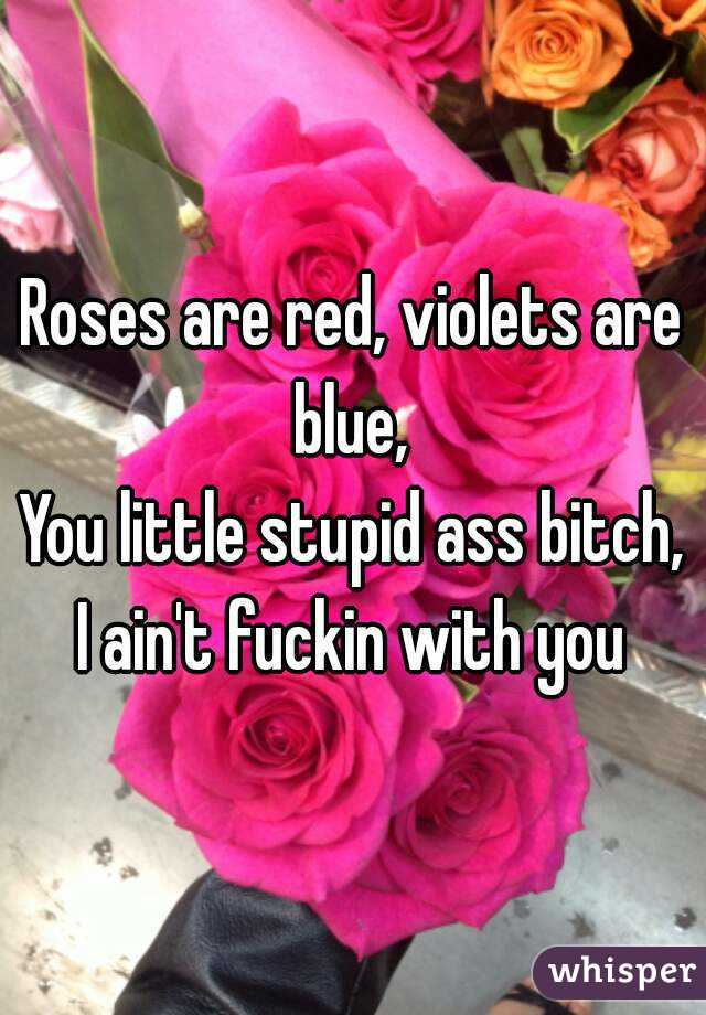Roses are red, violets are blue,  You little stupid ass bitch, I ain't fuckin with you