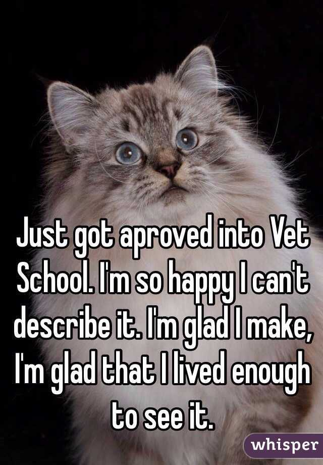 Just got aproved into Vet School. I'm so happy I can't describe it. I'm glad I make, I'm glad that I lived enough to see it.