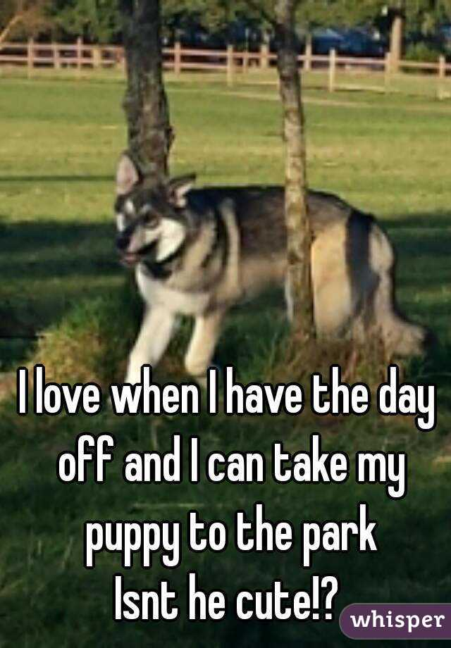 I love when I have the day off and I can take my puppy to the park Isnt he cute!?
