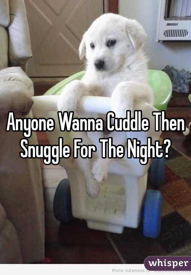 Anyone Wanna Cuddle Then Snuggle For The Night?