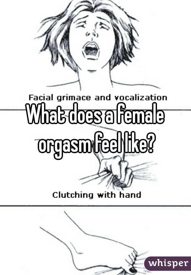 What a girl orgasm feels like