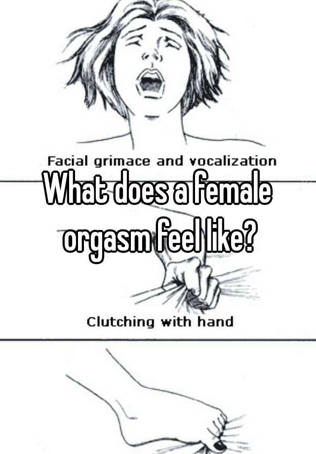 what does a female orgasm feel like