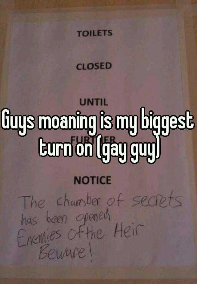 Moaning gay boys