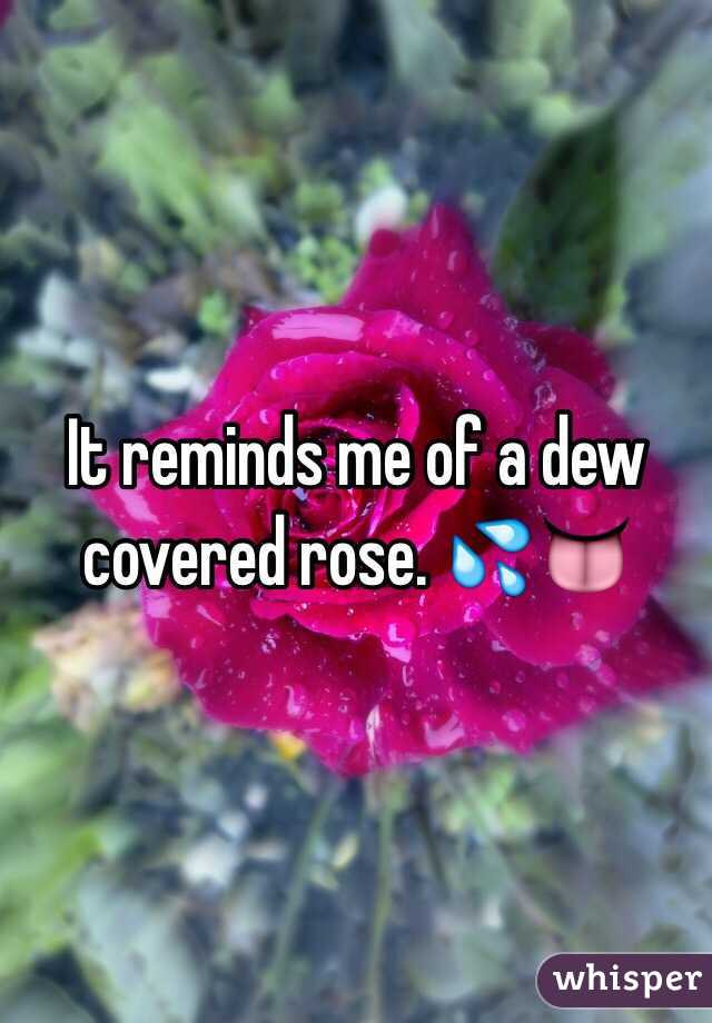 It reminds me of a dew covered rose. 💦👅