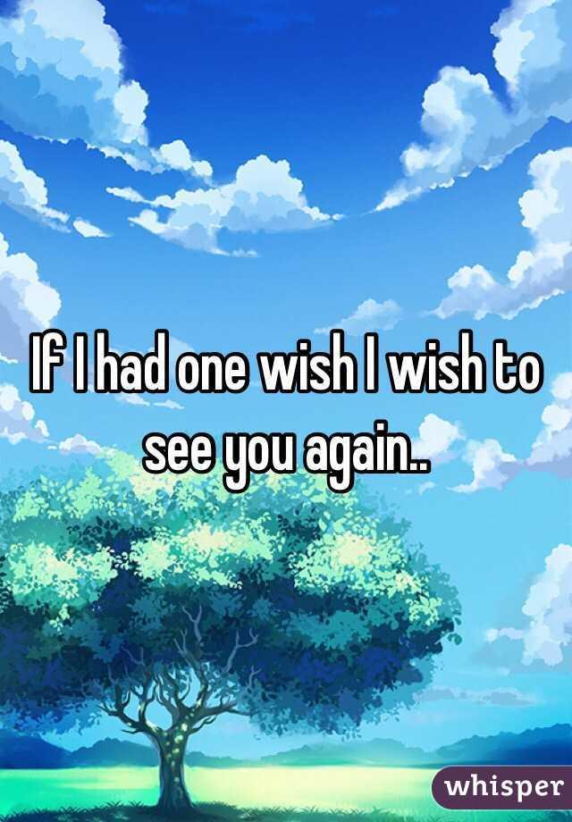 If I had one wish I wish to see you again..