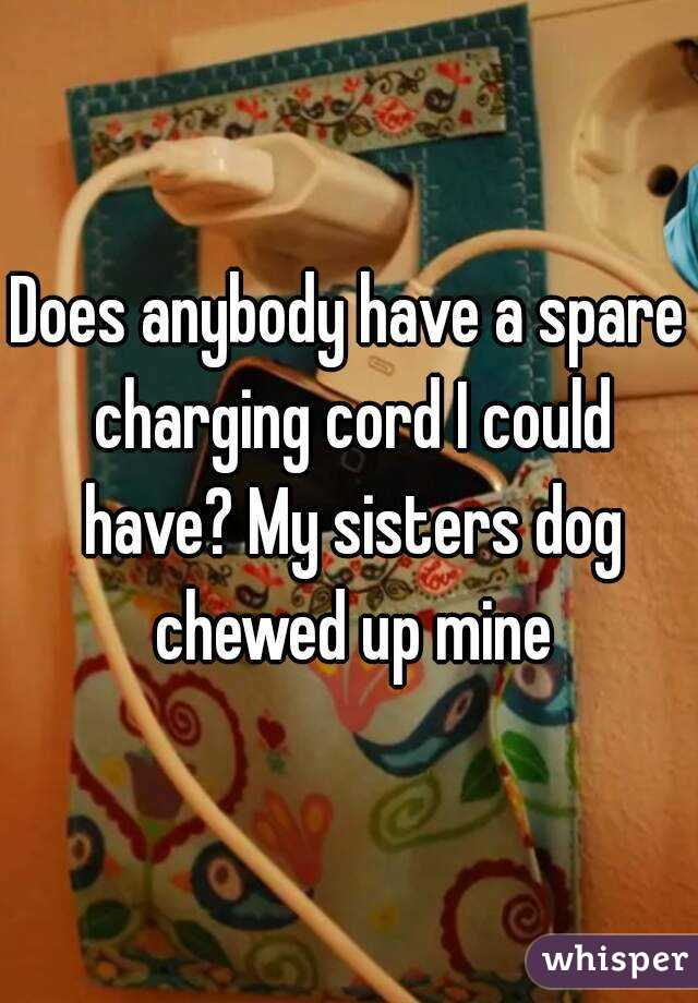 Does anybody have a spare charging cord I could have? My sisters dog chewed up mine