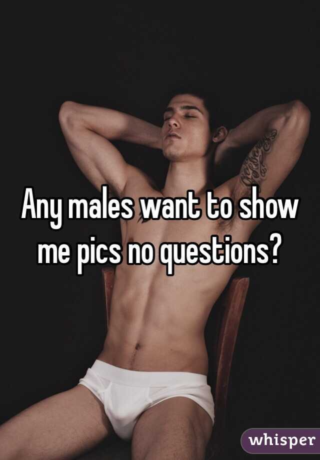 Any males want to show me pics no questions?