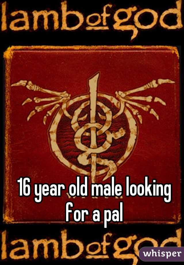 16 year old male looking for a pal