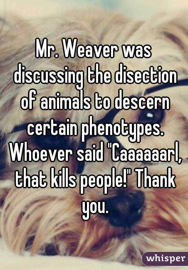 """Mr. Weaver was discussing the disection of animals to descern certain phenotypes. Whoever said """"Caaaaaarl, that kills people!"""" Thank you."""