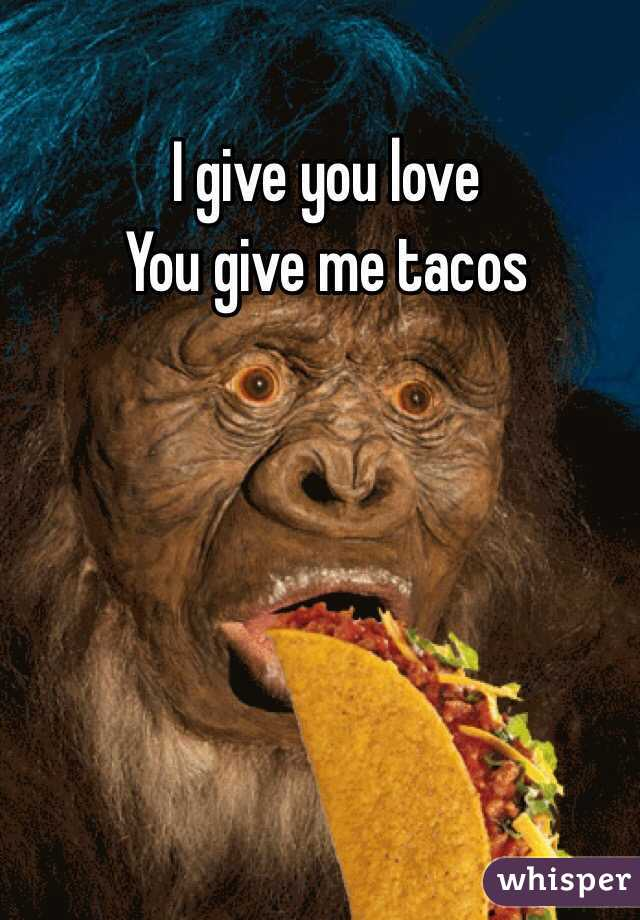 I give you love You give me tacos