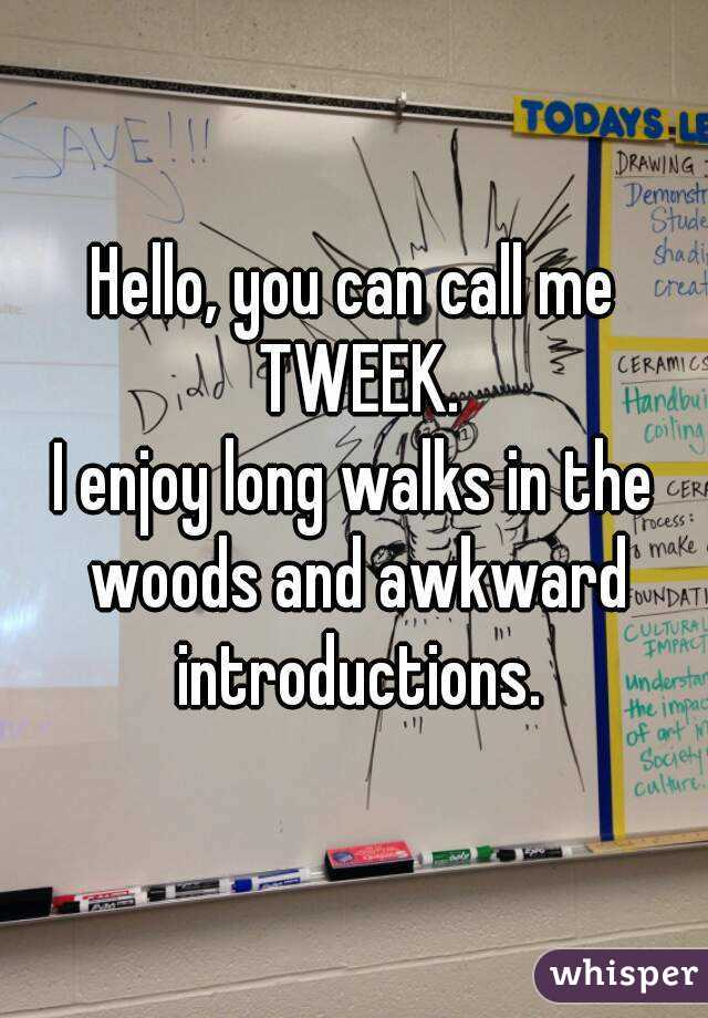 Hello, you can call me TWEEK. I enjoy long walks in the woods and awkward introductions.