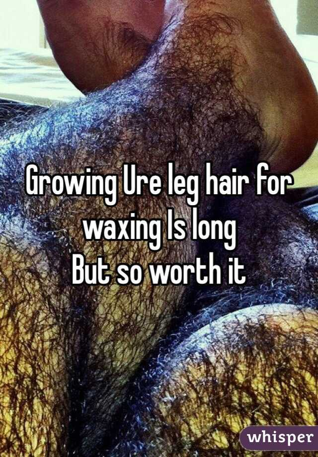 Growing Ure leg hair for waxing Is long But so worth it