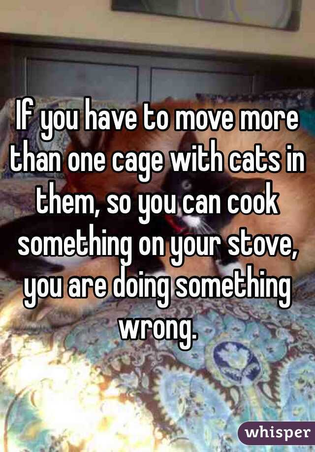 If you have to move more than one cage with cats in them, so you can cook something on your stove, you are doing something wrong.