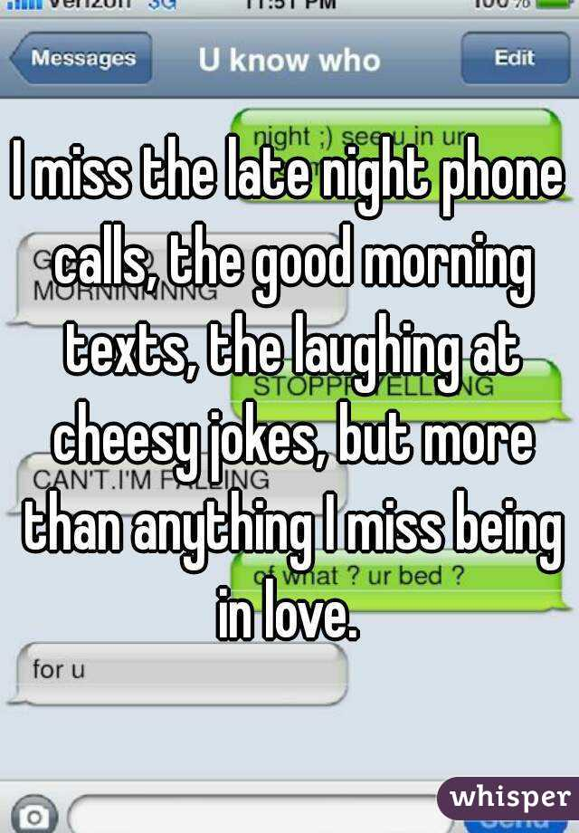 I miss the late night phone calls, the good morning texts, the laughing at cheesy jokes, but more than anything I miss being in love.