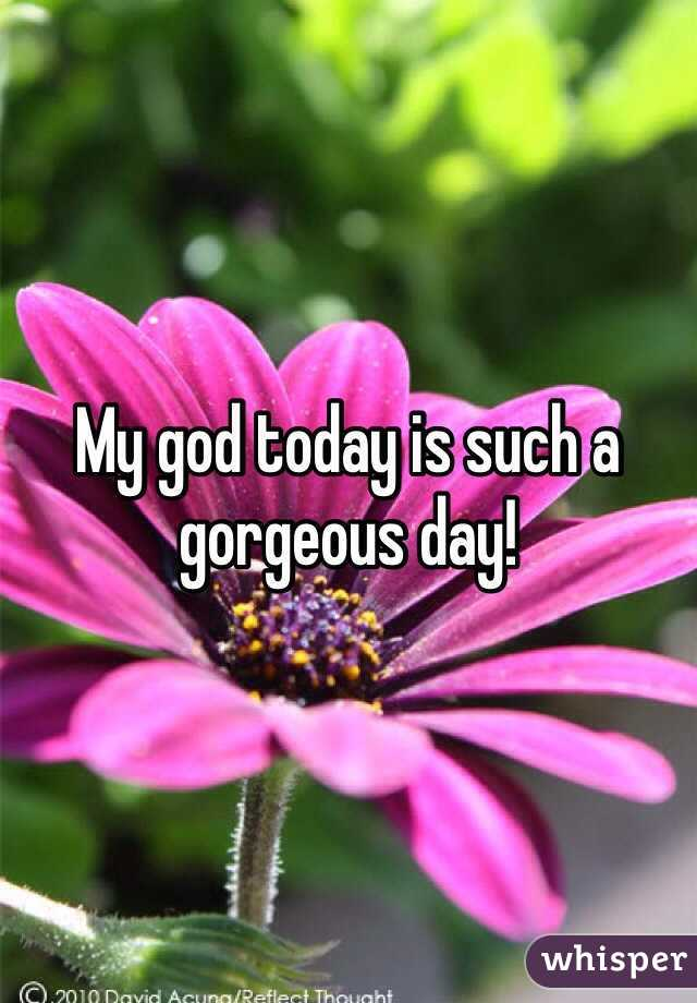 My god today is such a gorgeous day!