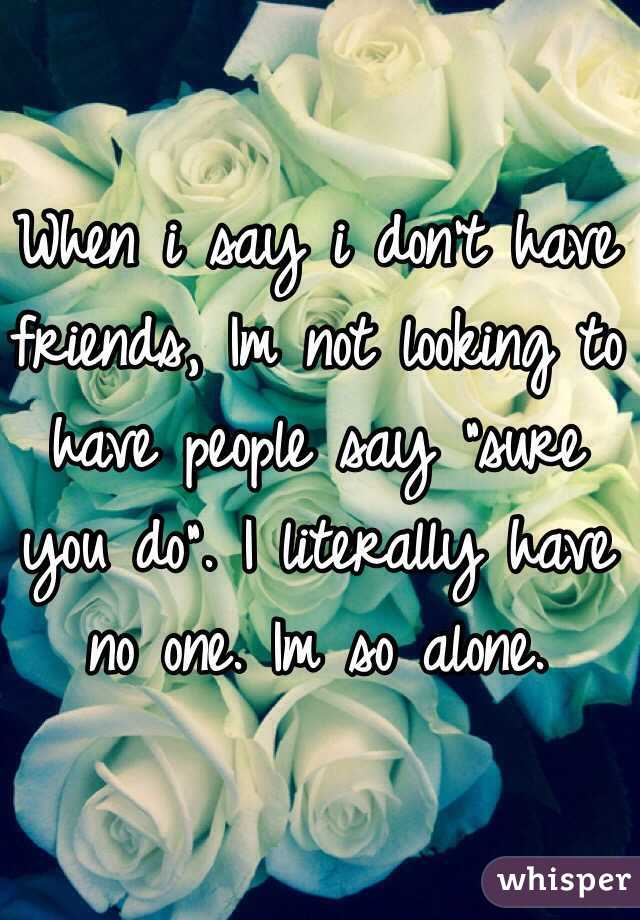 "When i say i don't have friends, Im not looking to have people say ""sure you do"". I literally have no one. Im so alone."
