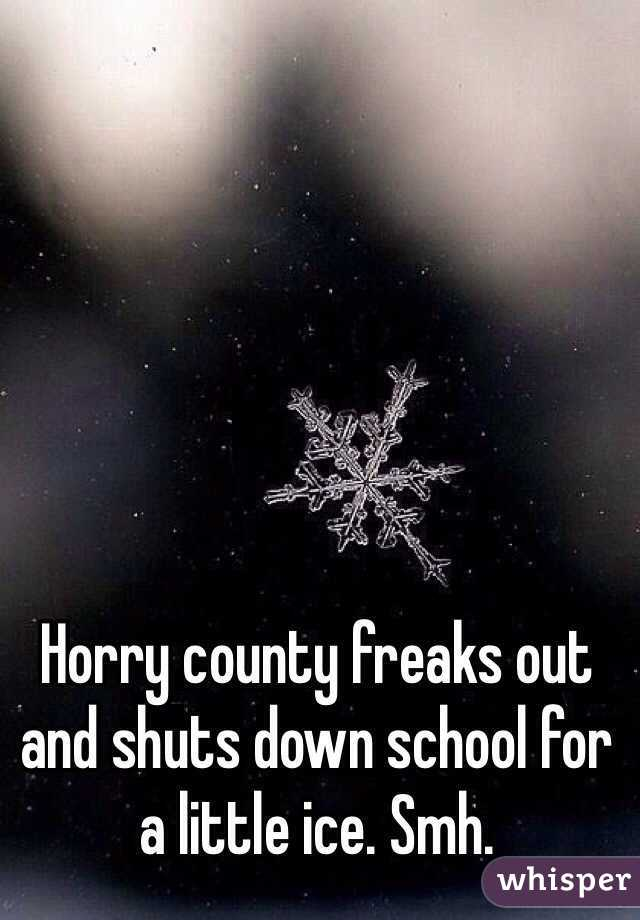 Horry county freaks out and shuts down school for a little ice. Smh.