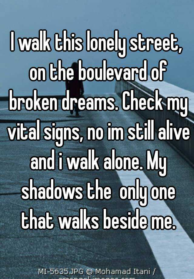 I walk this lonely street on the boulevard of broken for Street of dreams