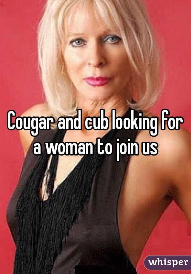 Looking for cougar