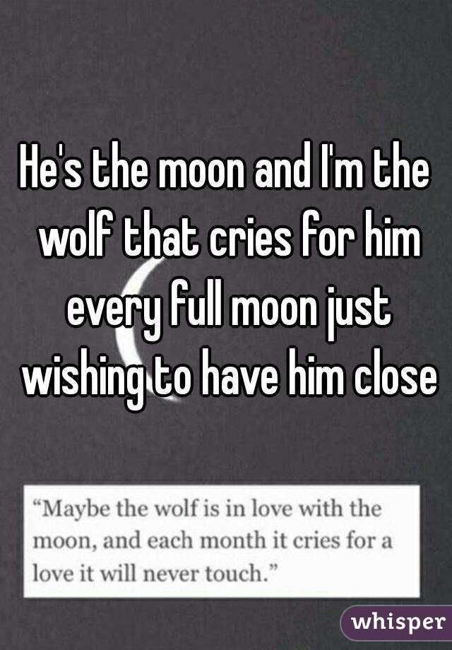He's the moon and I'm the wolf that cries for him every full moon just wishing to have him close