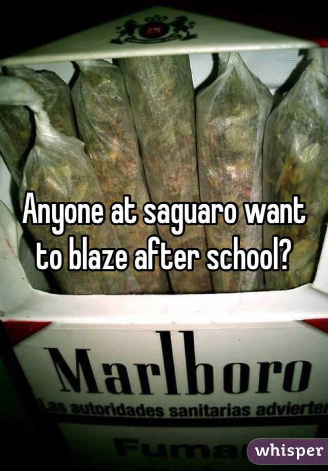 Anyone at saguaro want to blaze after school?