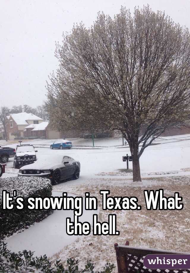 It's snowing in Texas. What the hell.