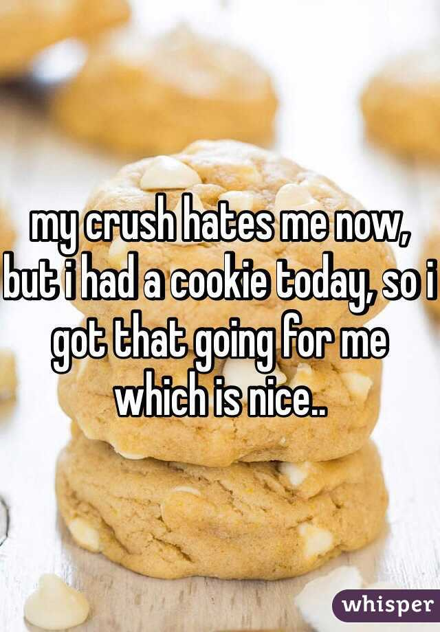 my crush hates me now, but i had a cookie today, so i got that going for me which is nice..
