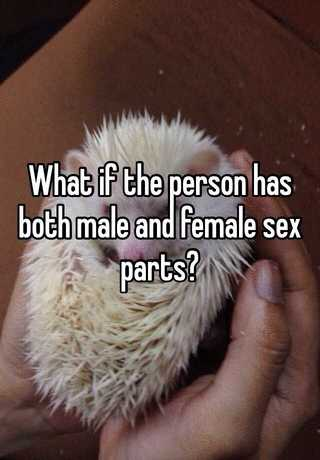Photos of a person with both sexes