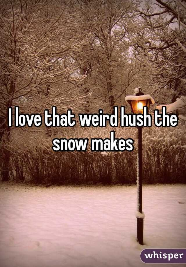 I love that weird hush the snow makes