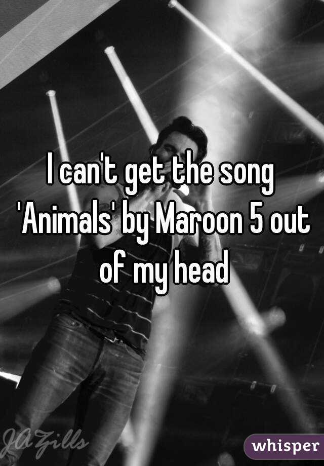 I can't get the song 'Animals' by Maroon 5 out of my head