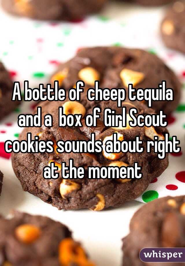 A bottle of cheep tequila and a  box of Girl Scout cookies sounds about right at the moment