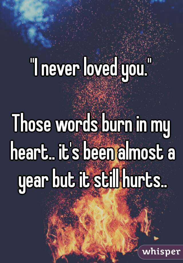 """I never loved you.""  Those words burn in my heart.. it's been almost a year but it still hurts.."
