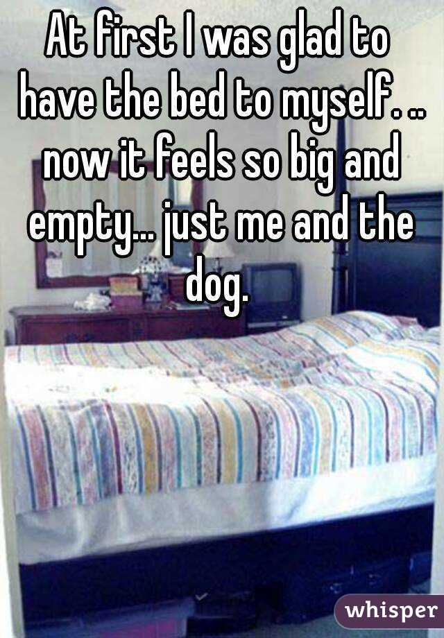 At first I was glad to have the bed to myself. .. now it feels so big and empty... just me and the dog.