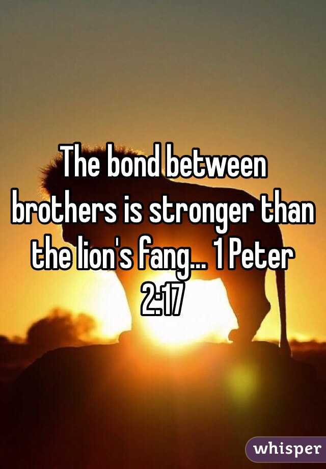 The bond between brothers is stronger than the lion's fang... 1 Peter 2:17