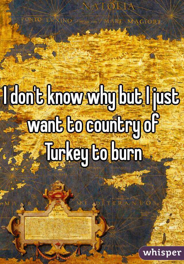 I don't know why but I just want to country of Turkey to burn