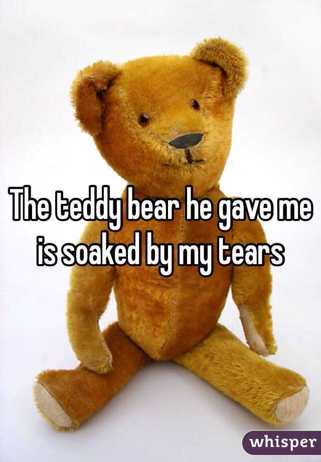 The teddy bear he gave me is soaked by my tears