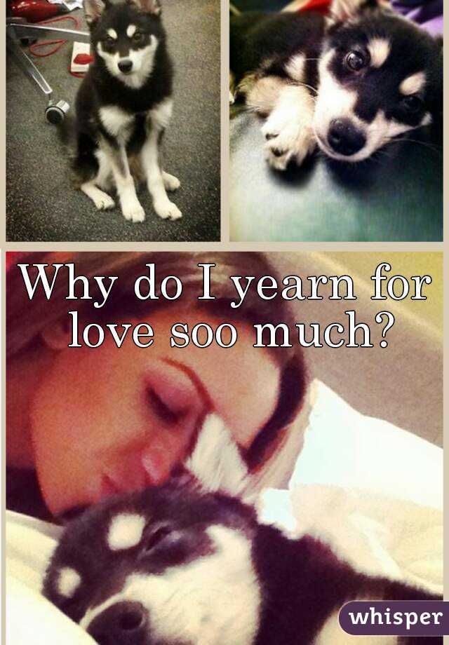 Why do I yearn for love soo much?
