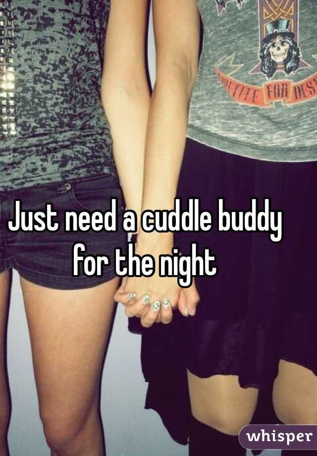 Just need a cuddle buddy for the night