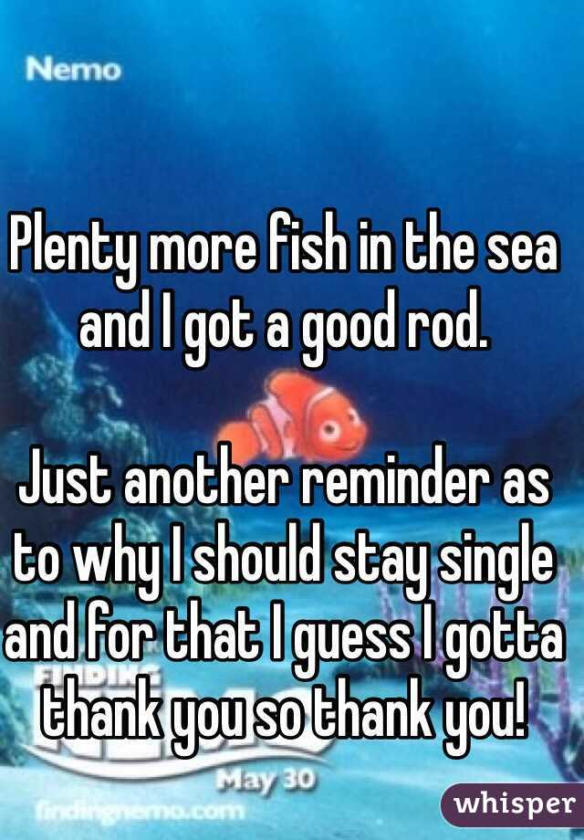 Plenty more fish in the sea and I got a good rod.  Just another reminder as to why I should stay single and for that I guess I gotta thank you so thank you!