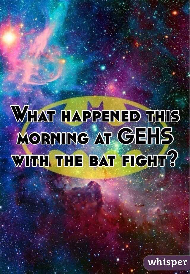 What happened this morning at GEHS with the bat fight?