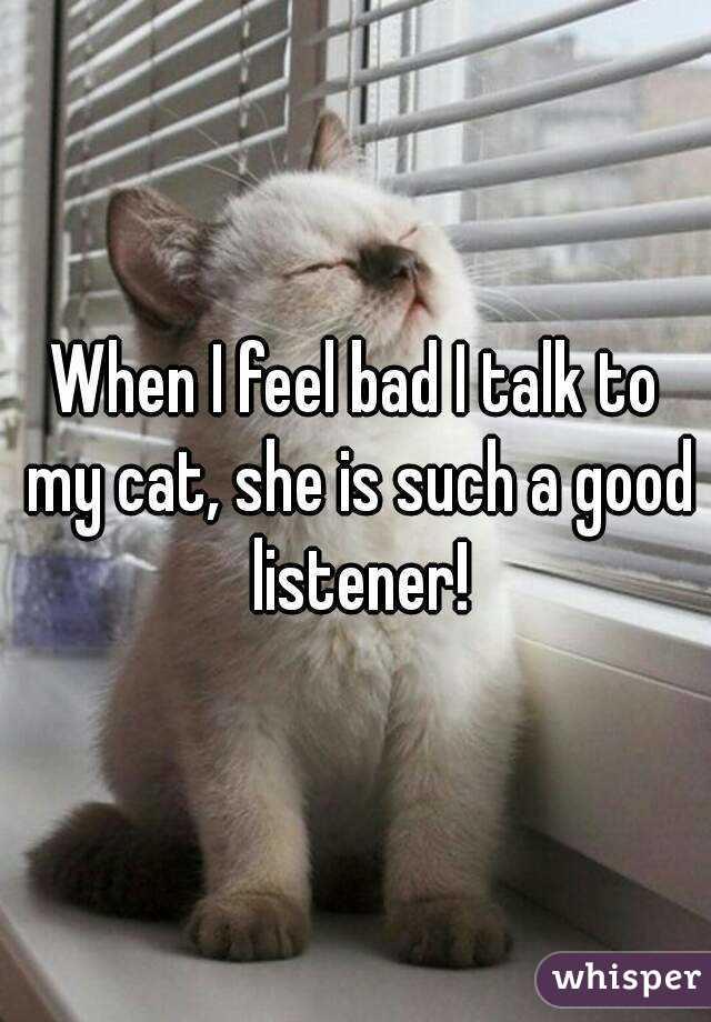 When I feel bad I talk to my cat, she is such a good listener!