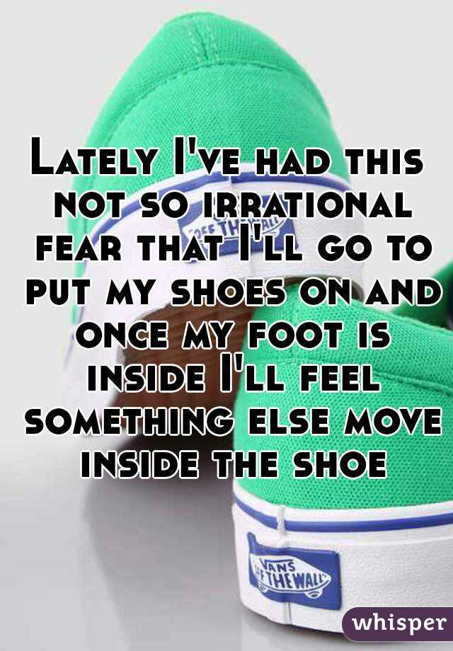 Lately I've had this not so irrational fear that I'll go to put my shoes on and once my foot is inside I'll feel something else move inside the shoe
