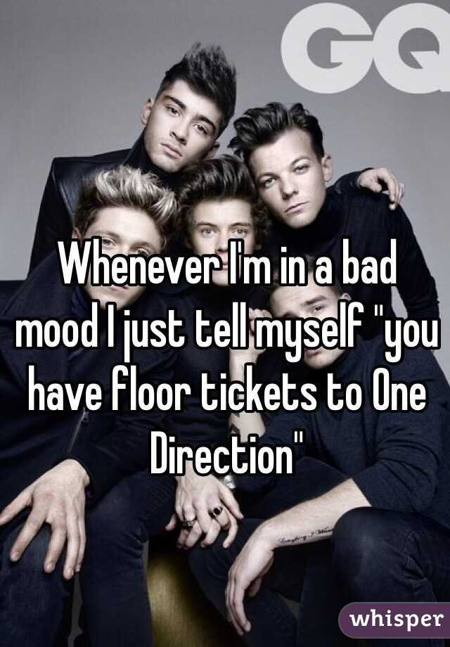 "Whenever I'm in a bad mood I just tell myself ""you have floor tickets to One Direction"""