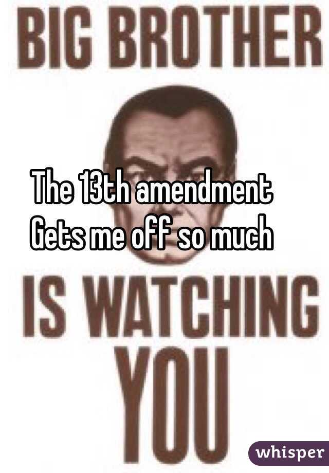 The 13th amendment  Gets me off so much