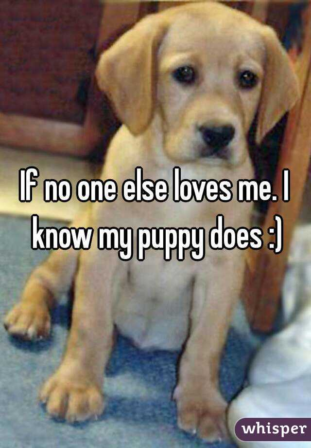 If no one else loves me. I know my puppy does :)