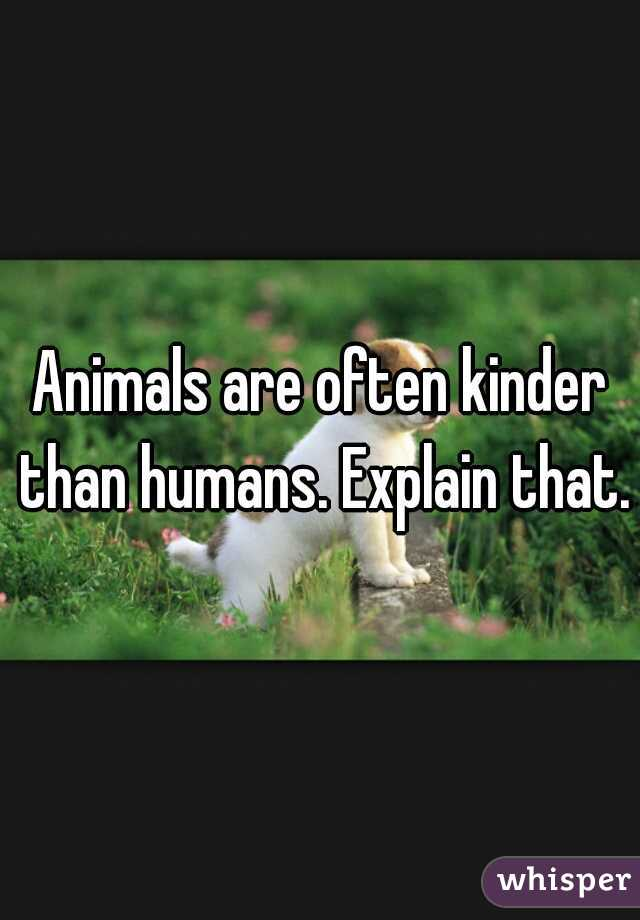 Animals are often kinder than humans. Explain that.