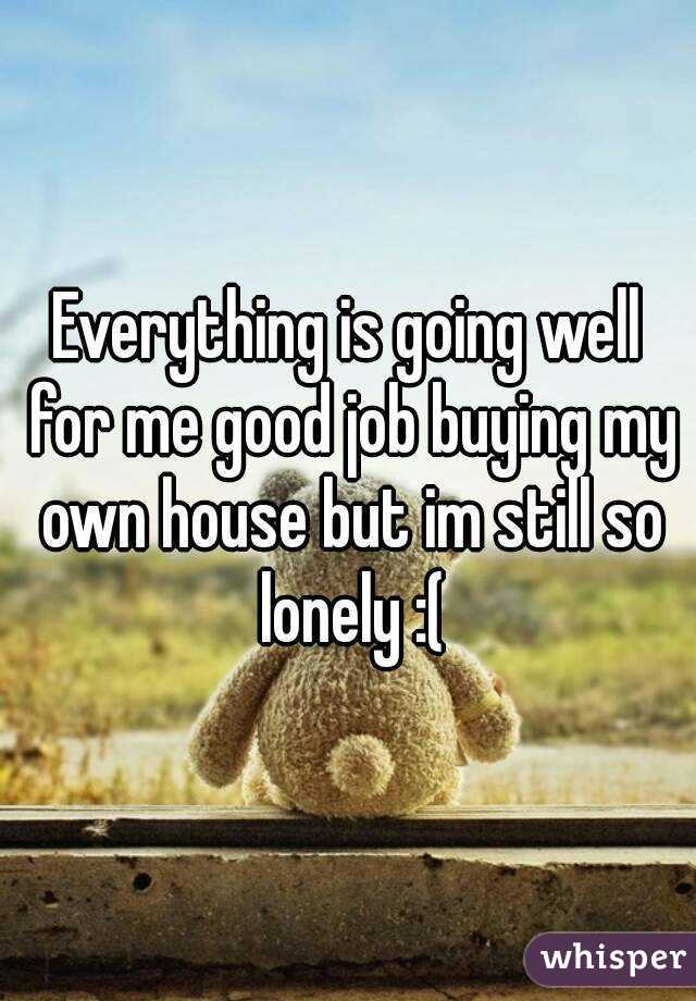 Everything is going well for me good job buying my own house but im still so lonely :(