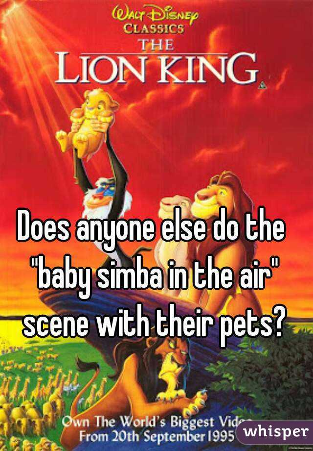"""Does anyone else do the """"baby simba in the air"""" scene with their pets?"""