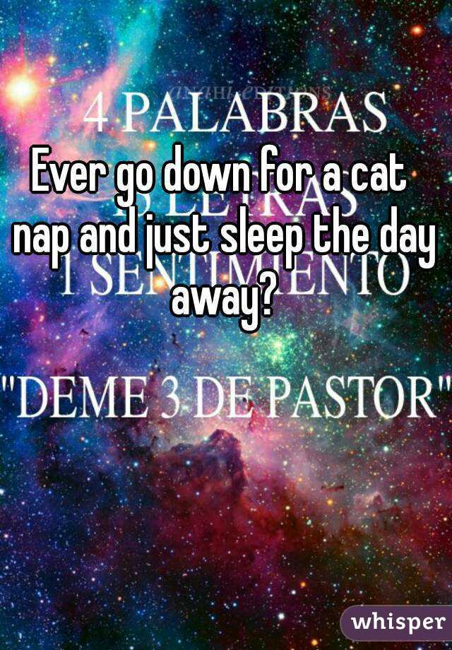 Ever go down for a cat nap and just sleep the day away?