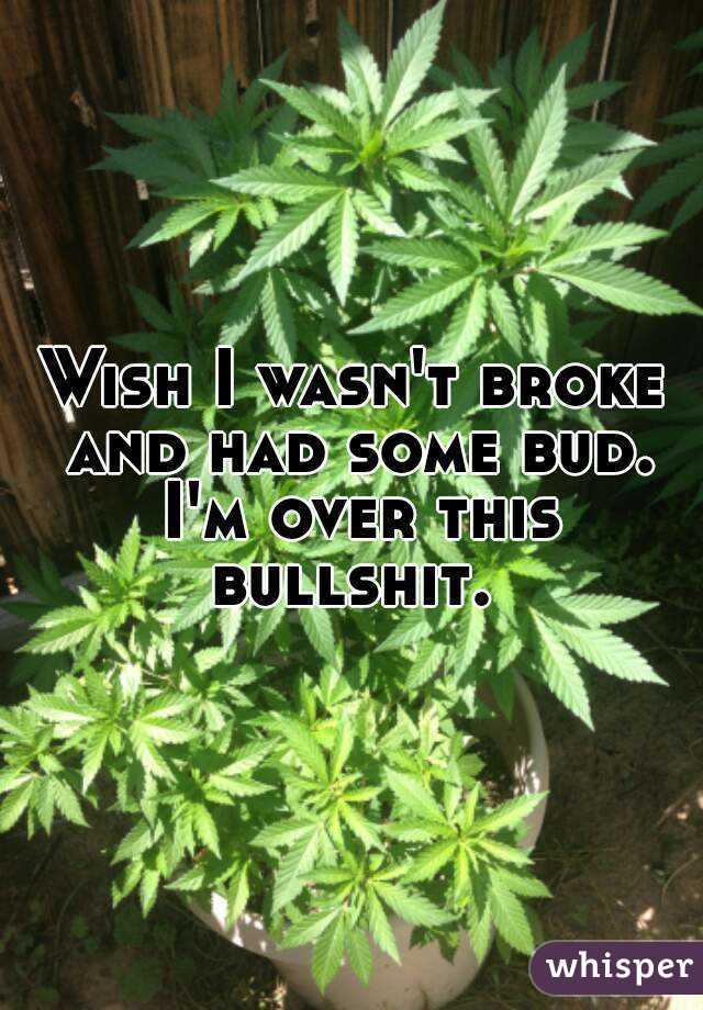 Wish I wasn't broke and had some bud. I'm over this bullshit.